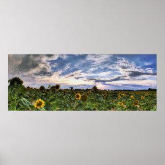 Landscape 19 poster