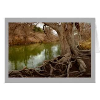 Landscape 23 Autumn river tangled roots fishing Card