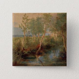 Landscape 2 pinback button
