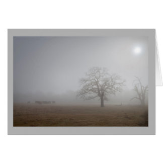Landscape 61 Cattle herd lonesome tree foggy day Card