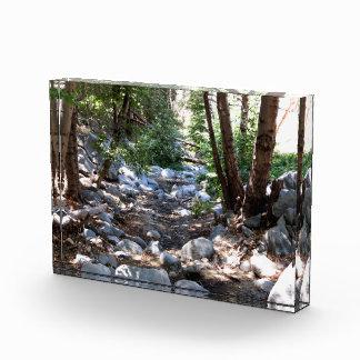 Landscape 7 award