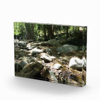 Landscape 8 acrylic award