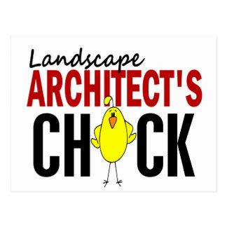 LANDSCAPE ARCHITECT'S CHICK POSTCARD