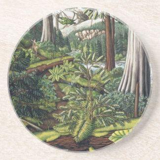 Landscape Art Coaster Old Growth Forest Coasters