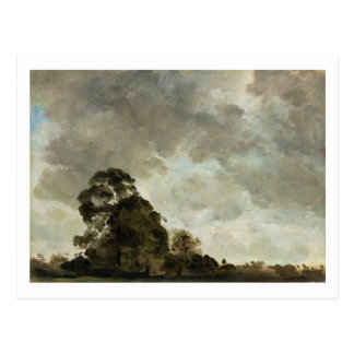 Landscape at Hampstead, Tree and Storm Clouds, c.1 Postcard