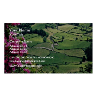 Landscape at Sao Miguel, Acores Islands  flowers Business Cards