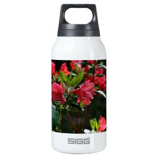 Landscape Beauty Insulated Water Bottle