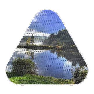 landscape bluetooth speaker