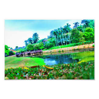 landscape garden photo print