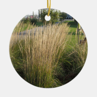 Landscape Grass matured  TEMPLATE add TEXT IMG Double-Sided Ceramic Round Christmas Ornament