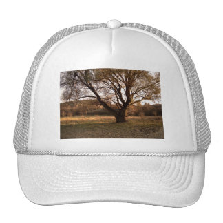 Landscape in Hungary Hat