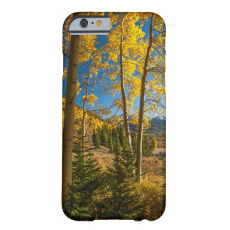 Landscape in San Juan Mountains Barely There iPhone 6 Case