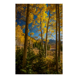 Landscape in San Juan Mountains Poster