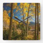 Landscape in San Juan Mountains Square Wall Clock