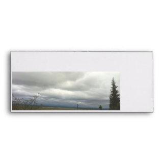 Landscape in the field with sky growing dark