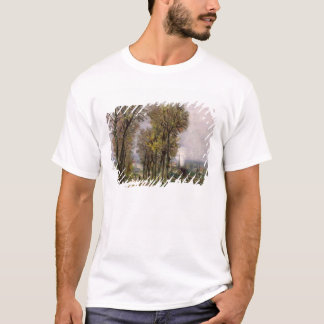 Landscape in the Ile de France, c.1878 T-Shirt