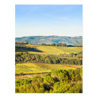 Landscape in Tuscany, Italy Postcard