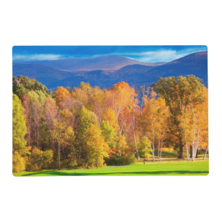 Landscape in Vermont Laminated Placemat