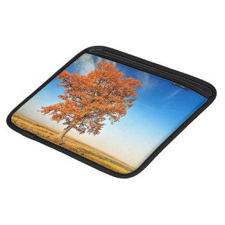 landscape iPad sleeve