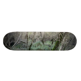 Landscape nature and cork oaks in Doñana, Spain Skateboard Deck