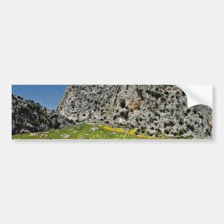 Landscape near Ronda Andalucia Spain flowers Bumper Stickers