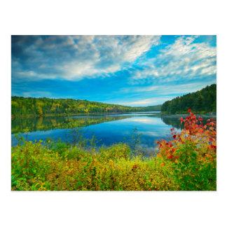 Landscape of Costello Lake Postcard
