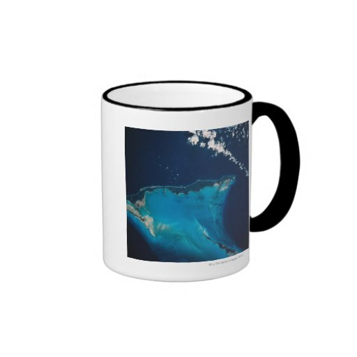 Landscape of Earth from Space 2 Ringer Coffee Mug