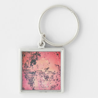 Landscape of Earth Keychain