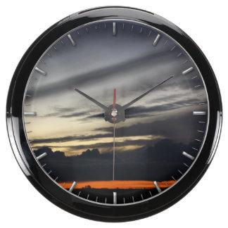 Landscape of getting late in the pine of Doñana Aquarium Clocks