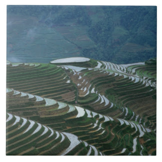 Landscape of rice terraces in the mountain, 2 ceramic tile