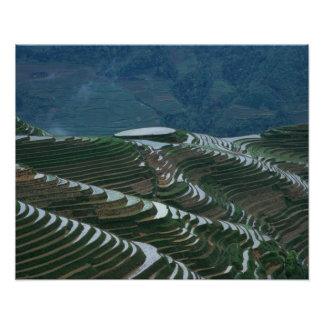 Landscape of rice terraces in the mountain, 2 poster