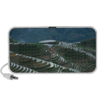 Landscape of rice terraces in the mountain, 2 PC speakers