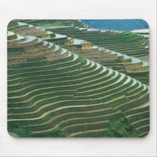 Landscape of rice terraces in the mountain, 3 mouse pad