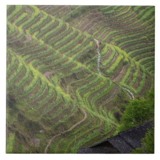 Landscape of rice terraces in the mountain, ceramic tile