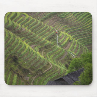 Landscape of rice terraces in the mountain, mouse pad