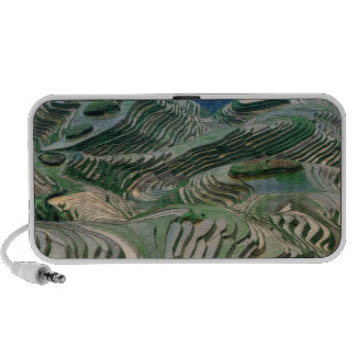 Landscape of rice terraces in the mountain, iPhone speakers