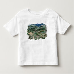 Landscape of rice terraces in the mountain, toddler t-shirt