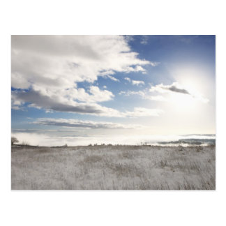landscape of snow covered grassy field postcard