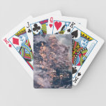 Landscape of the Earth 2 Bicycle Playing Cards