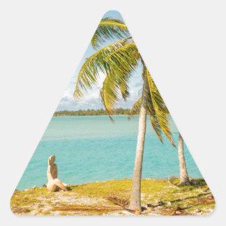 Landscape off will bora will bora triangle sticker