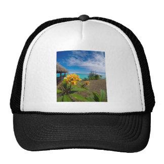 Landscape off will bora will bora trucker hat