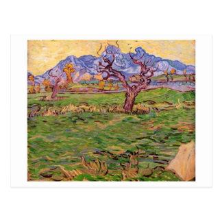 Landscape Olive Tree Mountains, Van Gogh Fine Art Postcard