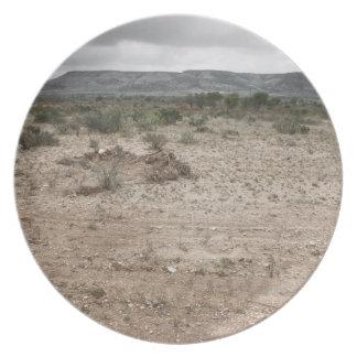 Landscape, Texas, USA 2 Melamine Plate