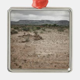 Landscape, Texas, USA 2 Square Metal Christmas Ornament