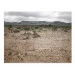 Landscape, Texas, USA 2 Postcards