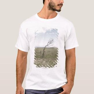 Landscape, Texas, USA T-Shirt