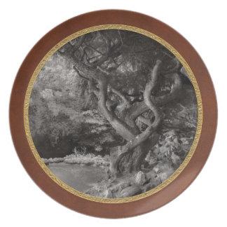 Landscape - The Forbidden Forest Plate