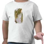 Landscape, The Waterfall T Shirt