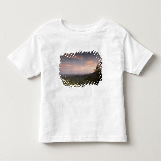 Landscape Under A Sunset Toddler T-shirt