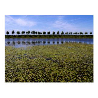 Landscape Waterscape Postcard
